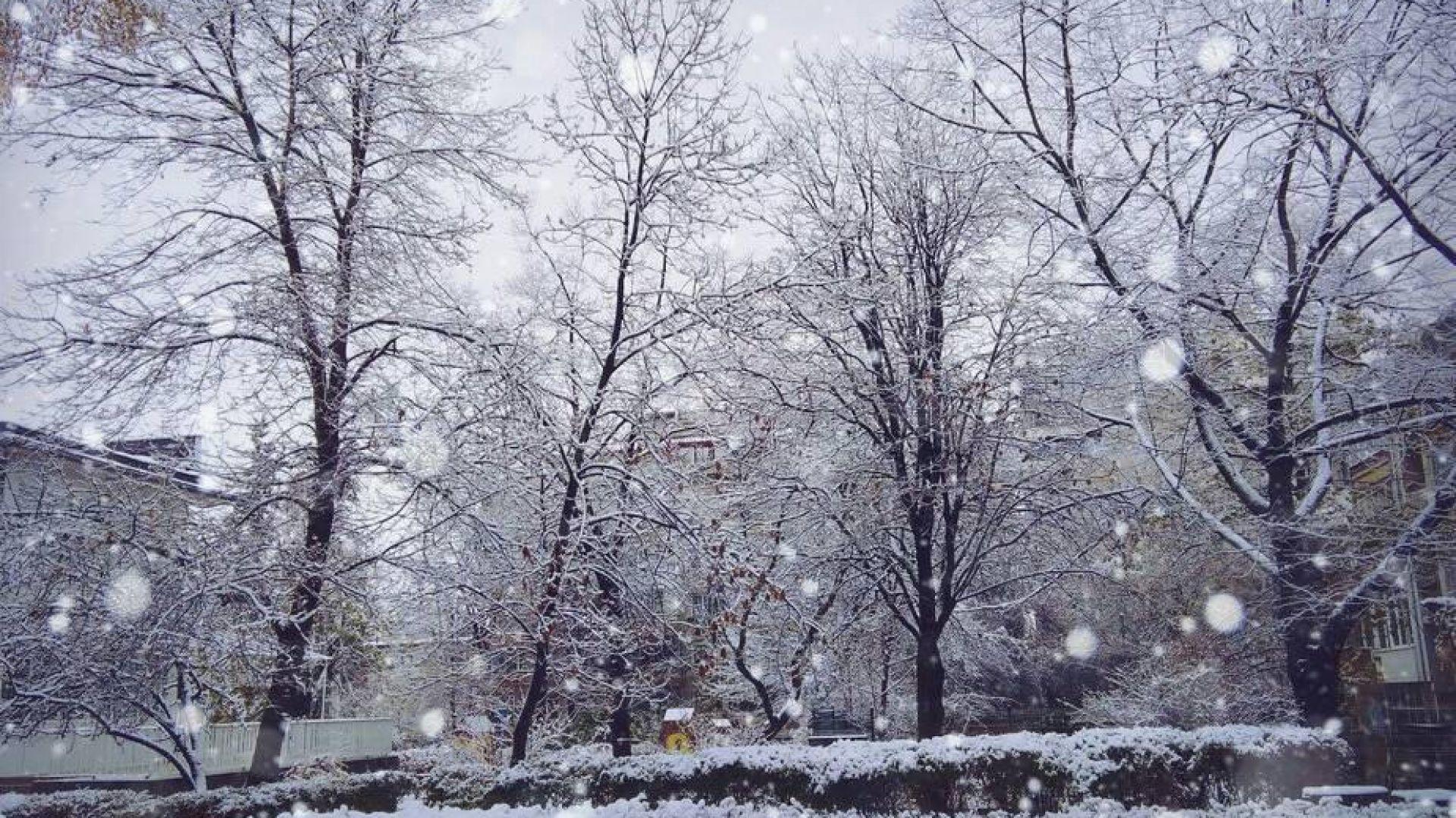 Снегът в Плевен и Видин - повече, отколкото в Москва