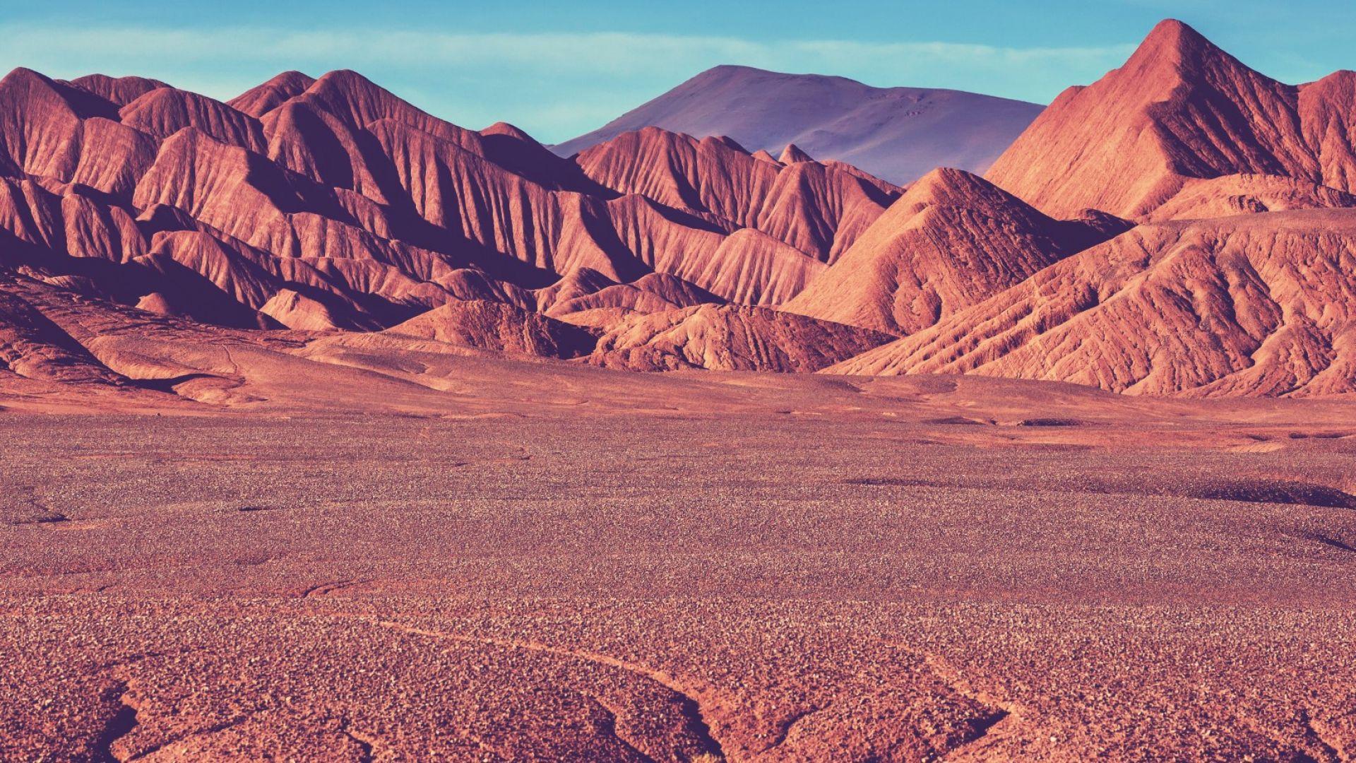 5-годишно дете оцеля самичко в аржентинска пустиня