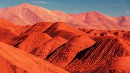 Незапомнен дъжд в пустинята уби 85 на сто от живота там