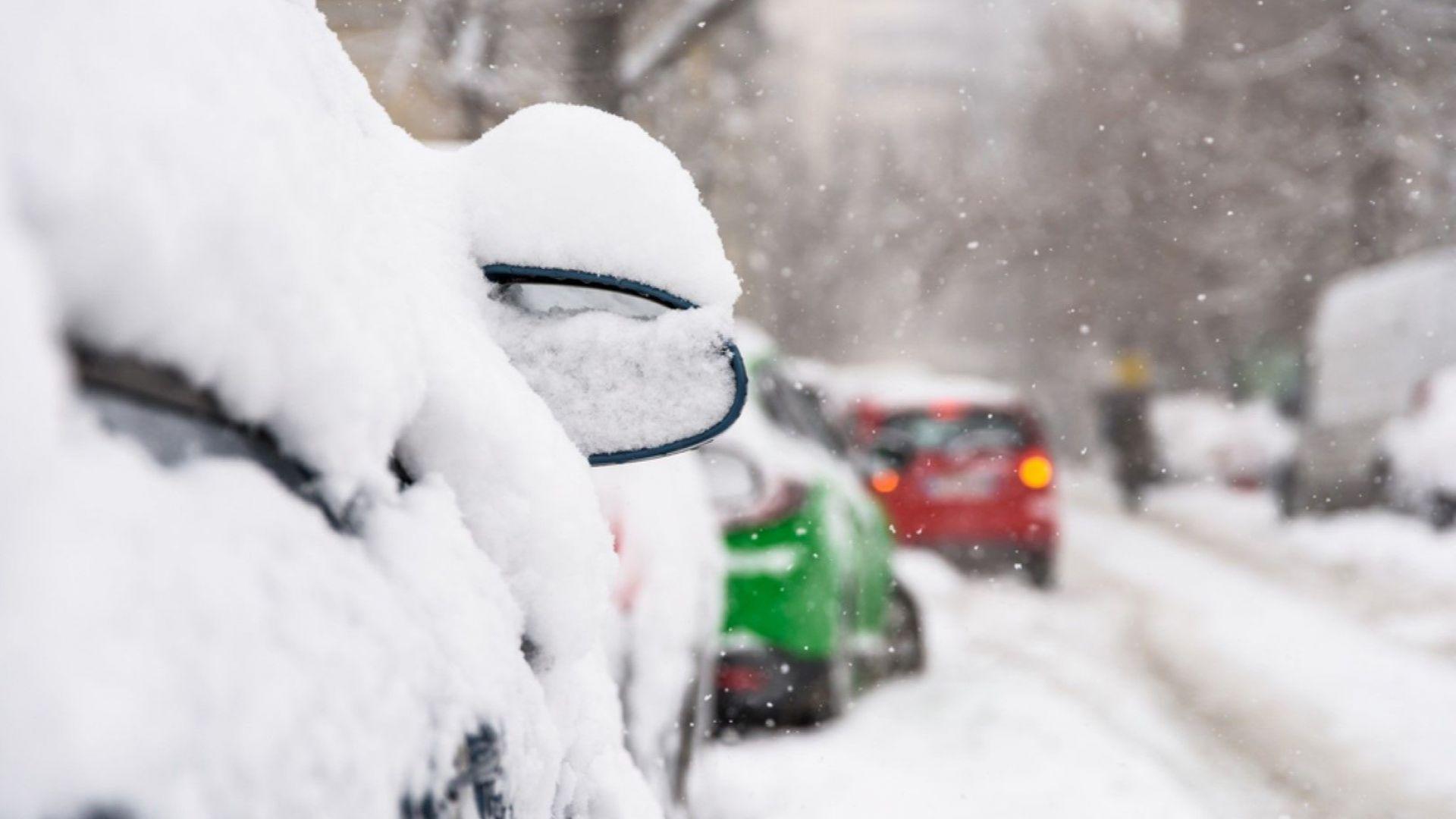 Близо 70 автомобила бяха повредени в Букурещ от паднали дървета