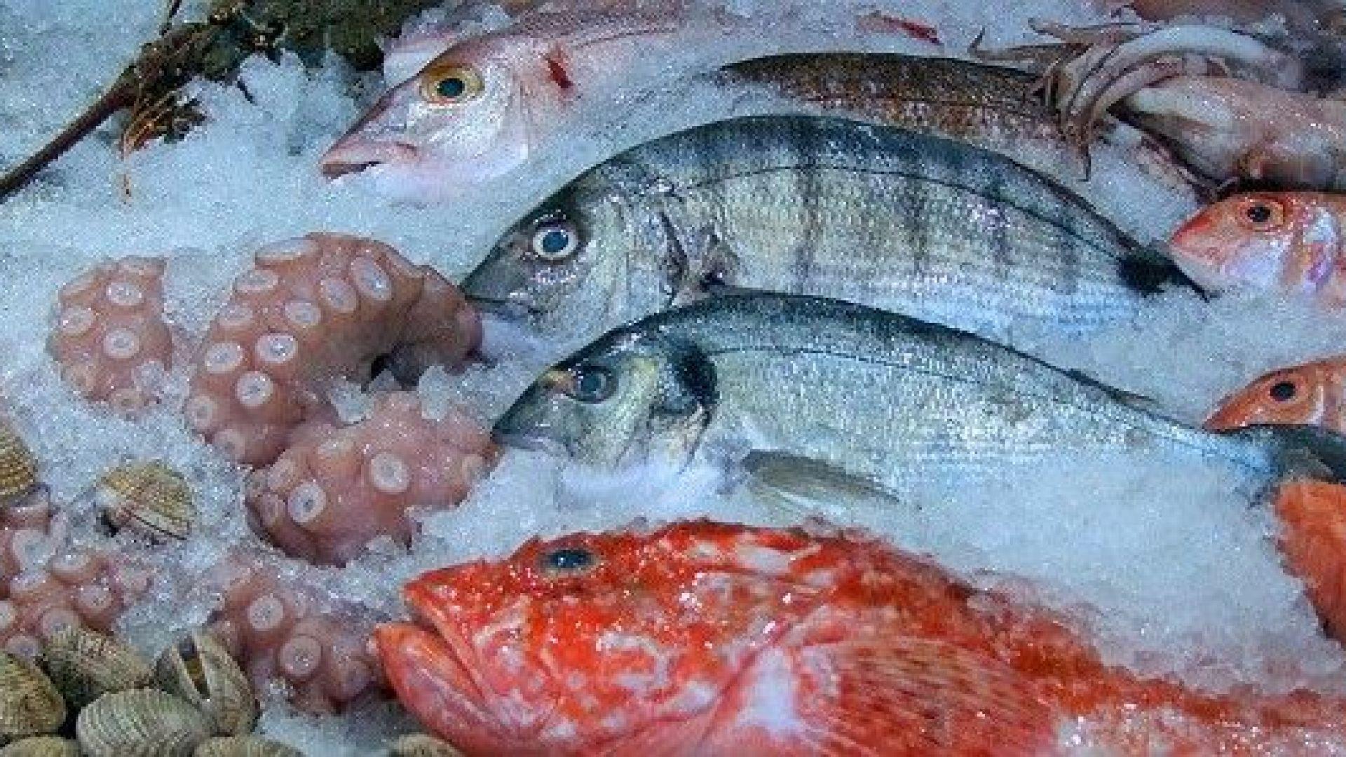 Харчим едва по 40 лева за риба годишно