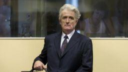 Произнасят присъдата на Радован Караджич в началото на 2019-а