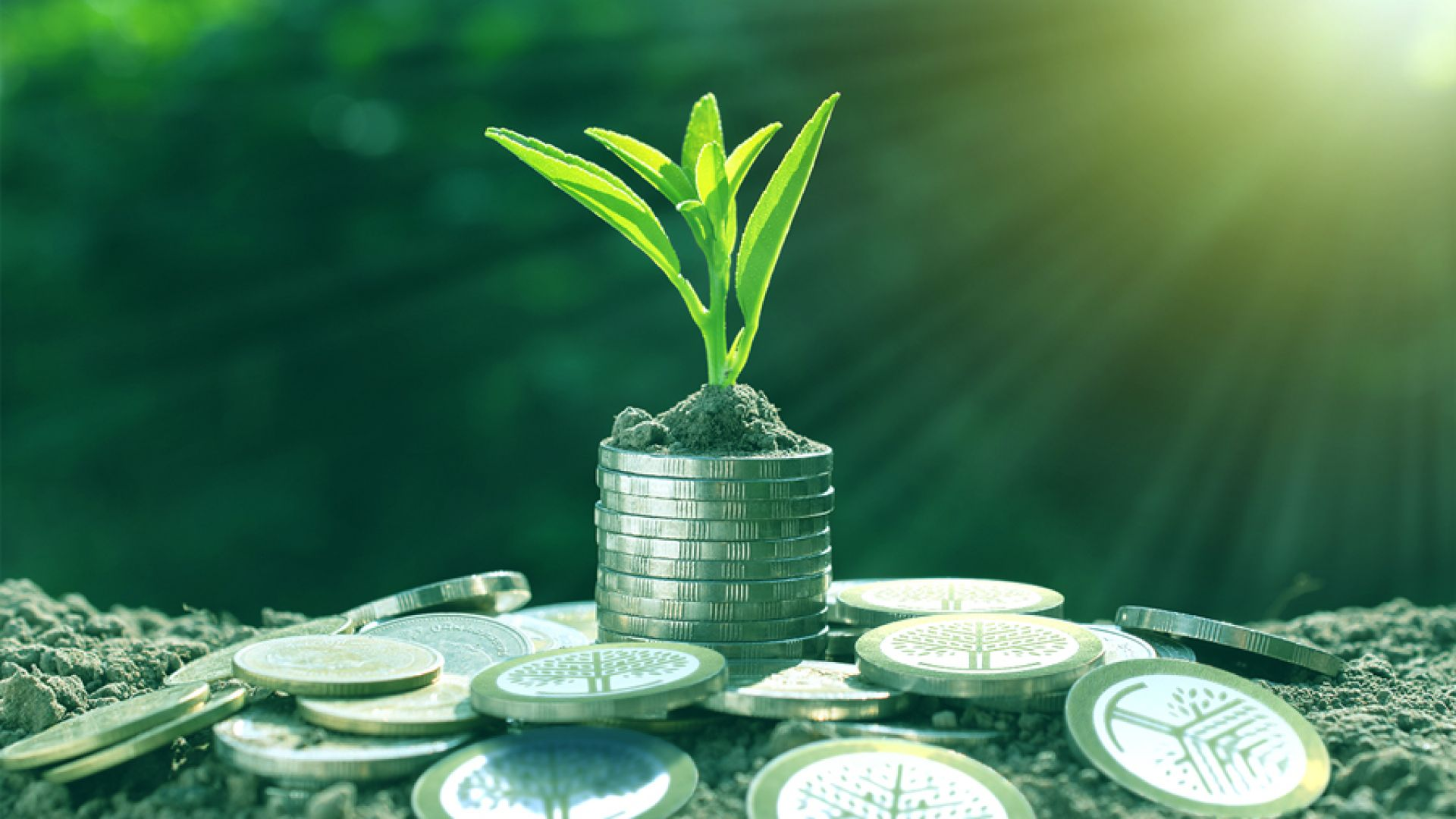 За стойността на инвестициите