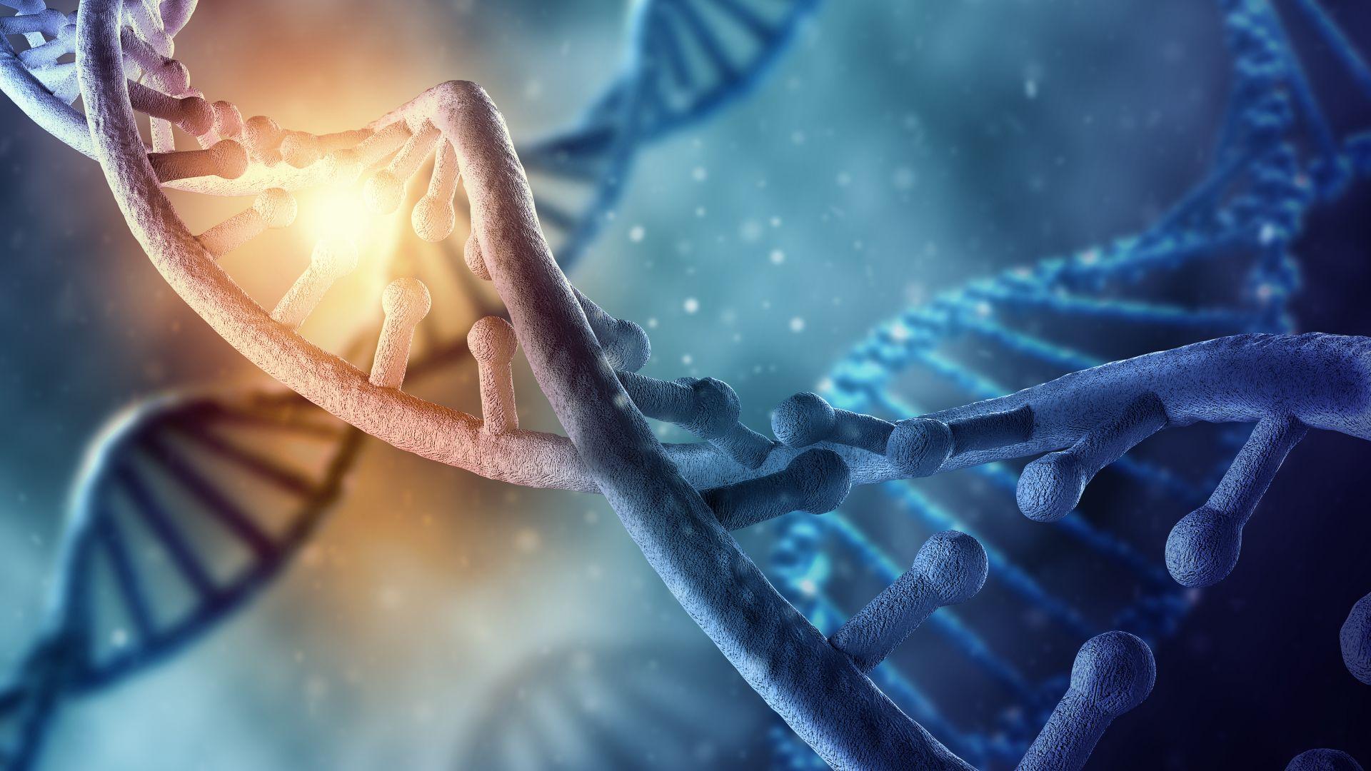 Харвард също експериментира с редакция на човешко ДНК