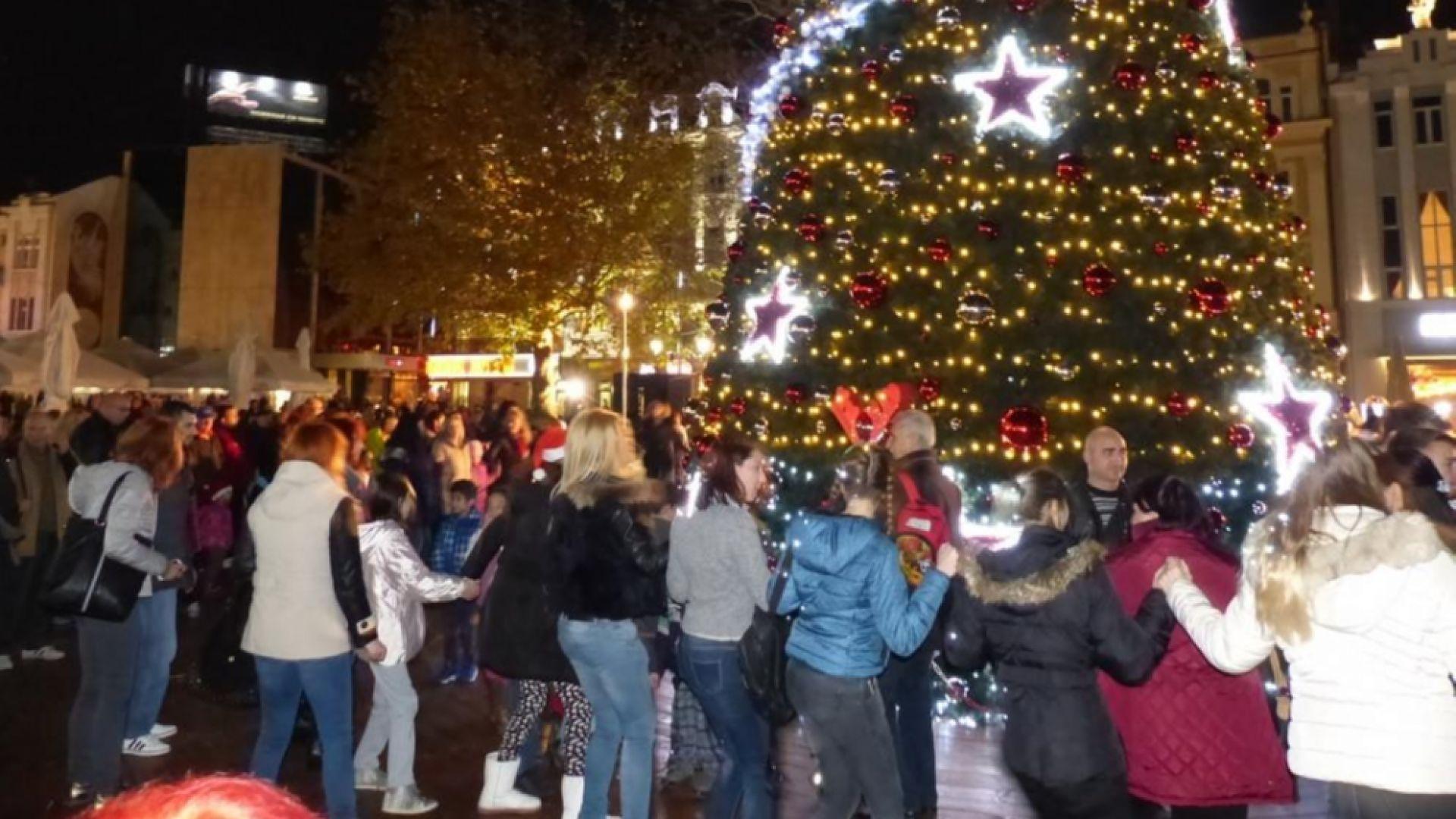 С голямо парти ще запялат Коледната елха в Пловдив
