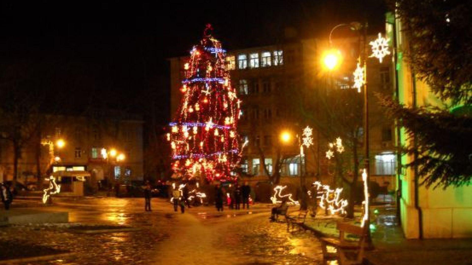 Коледната елха във Варна светва на Никулден