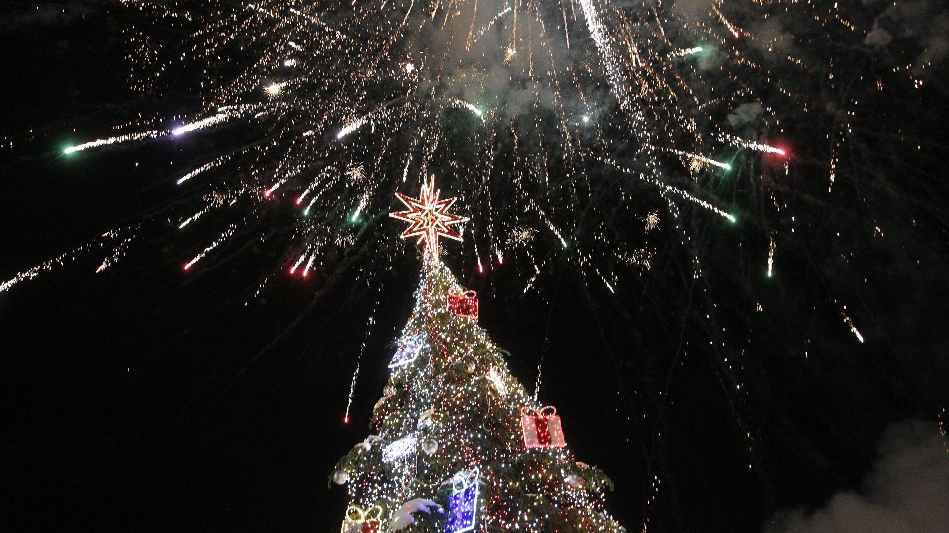 Коледната елха вече грее в центъра на София (снимки)
