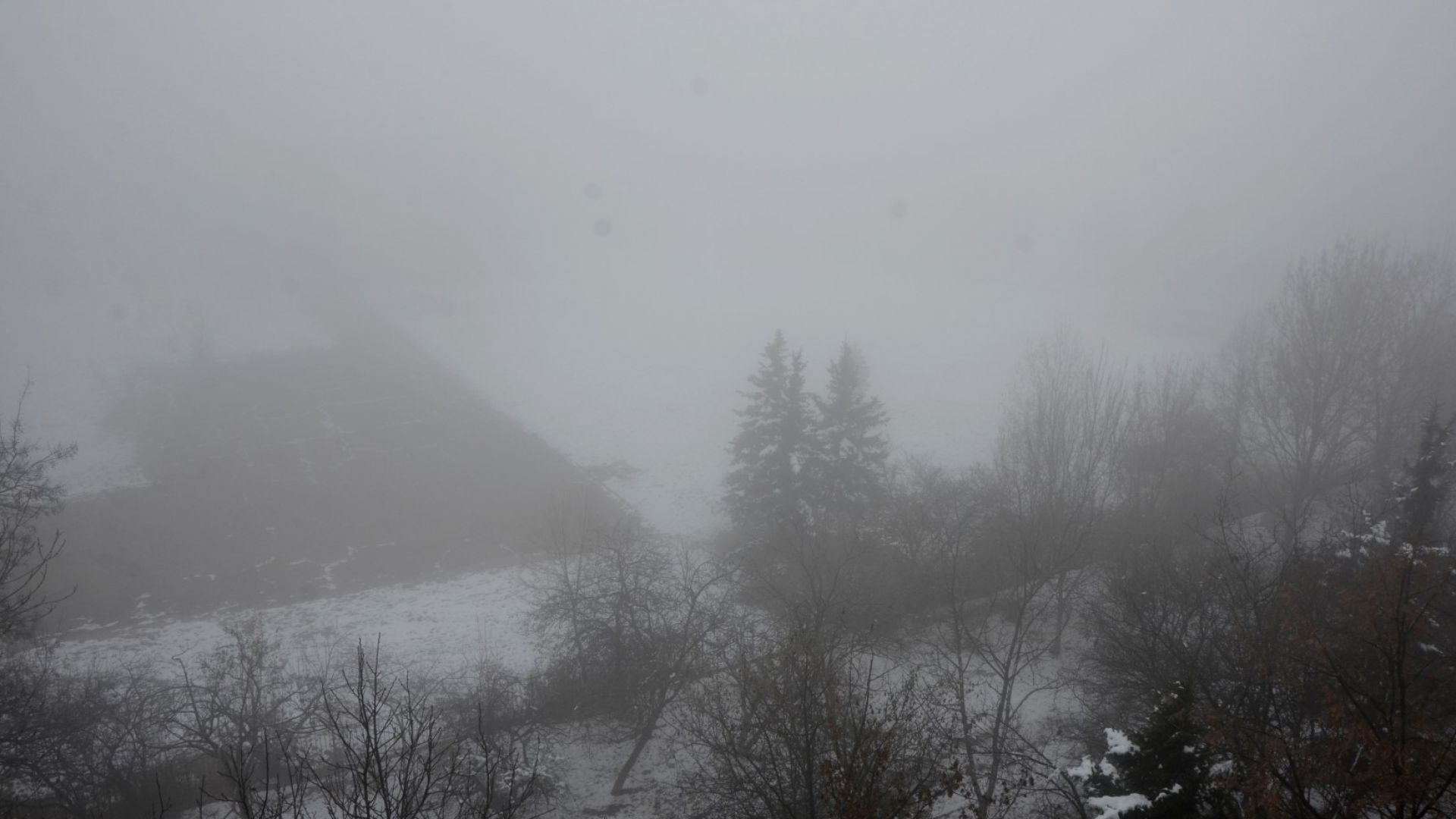 "АПИ: Гъста мъгла на ""Хемус"", има до 20 метра видимост"