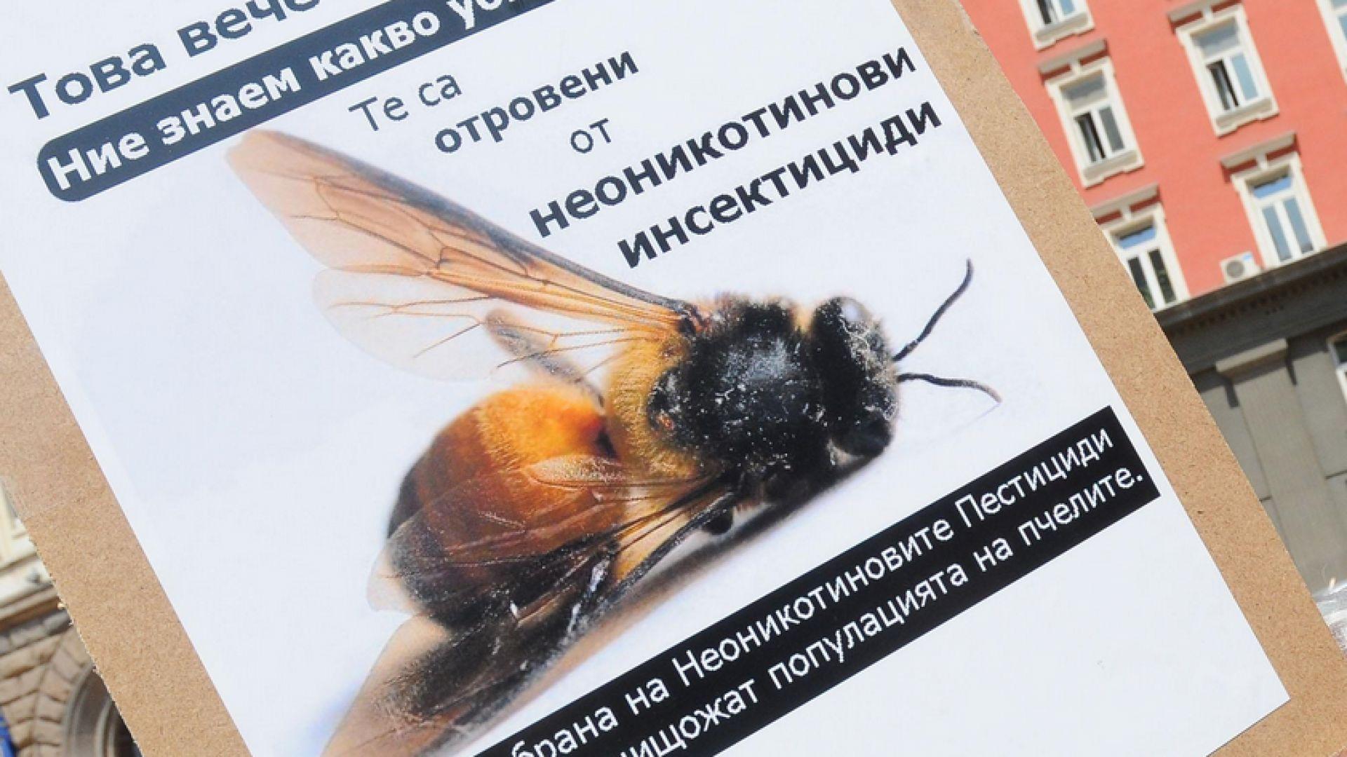 Откриха подписка в защита на пчелите