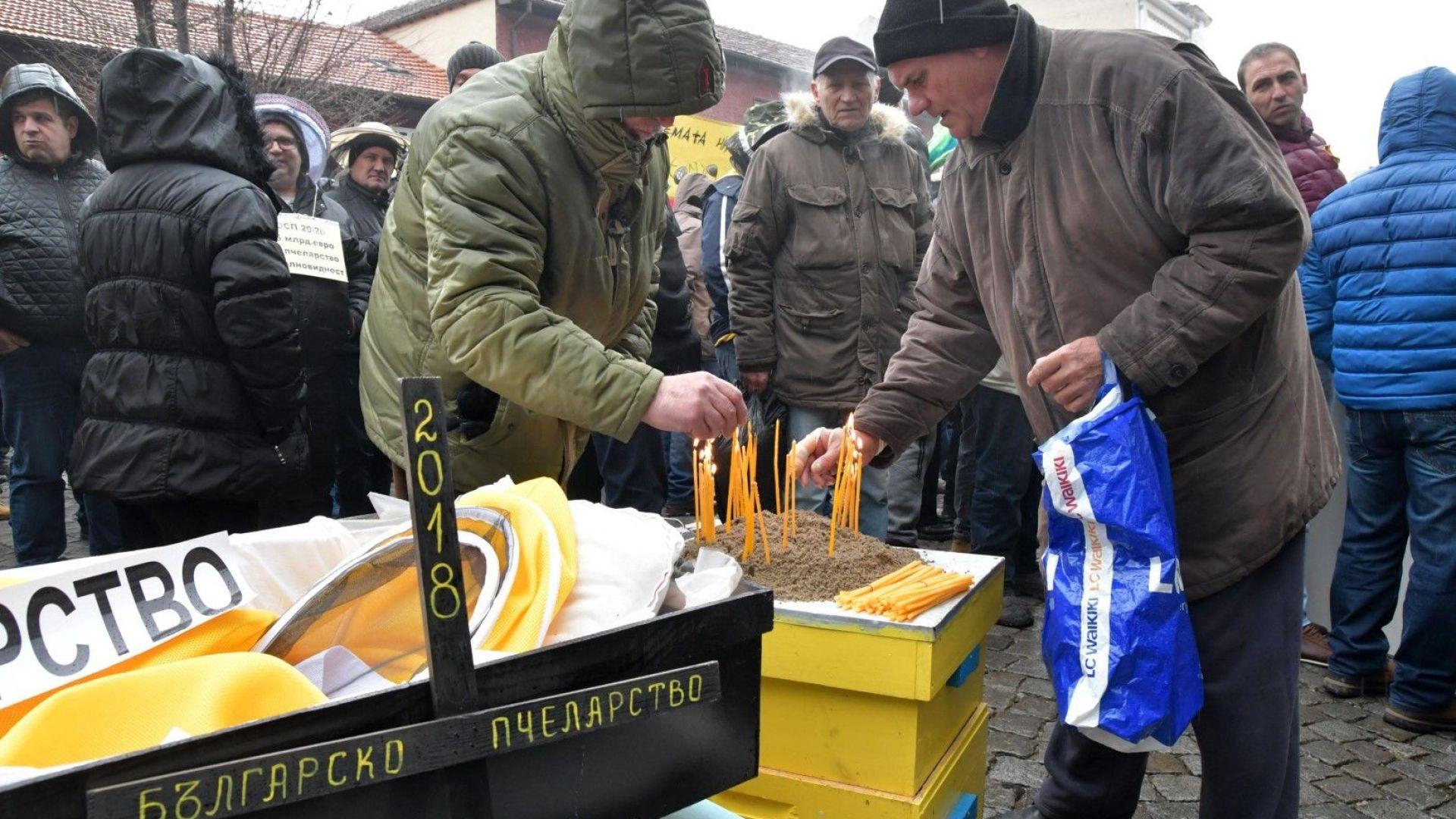 Пчелари излязоха на протест с ковчег пред Министерството на земеделието