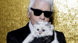 Котката на Лагерфелд може да наследи част от богатството му