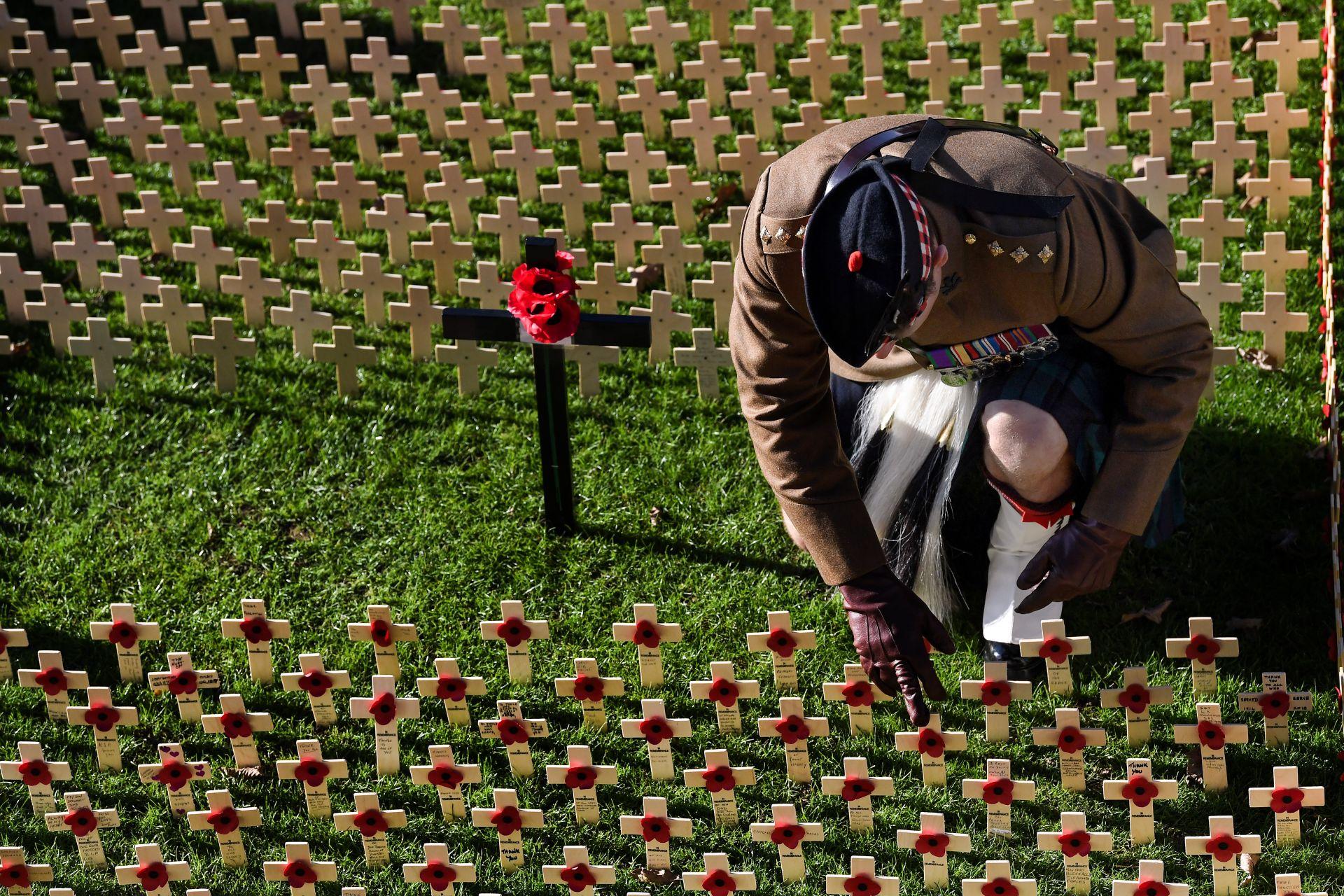 29 октомври, Единбург - стотици кръстове с макове в памет на загиналите в Първата световна война