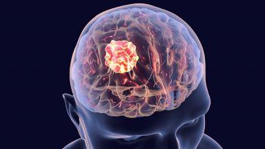 Учени разработиха молекулярна лампа, която осветява рака