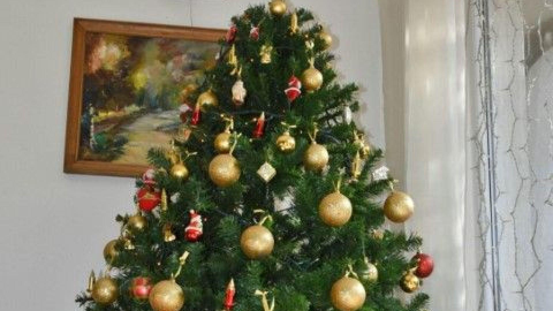 Премиер и президент честитиха Коледа във фейсбук