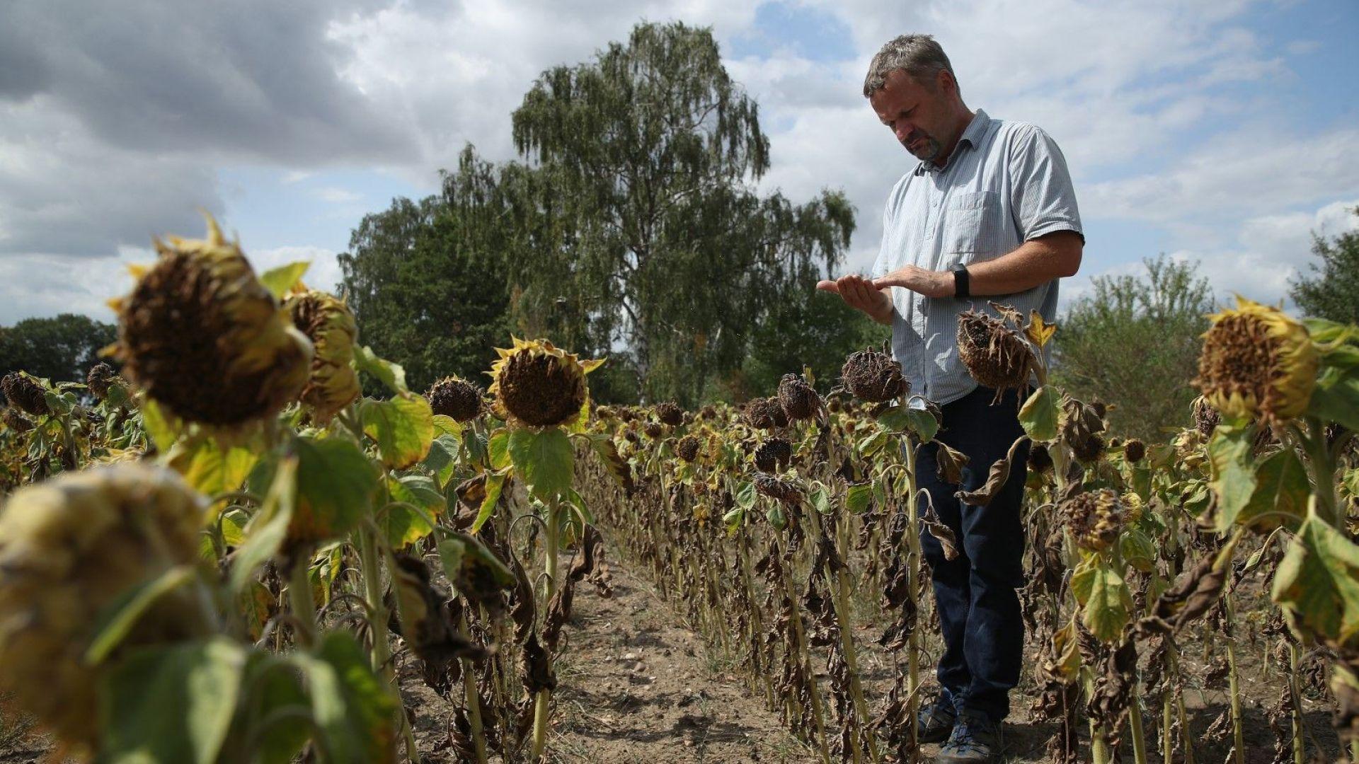 Франция си издейства 1 млрд. евро дотации от ЕС заради сушата