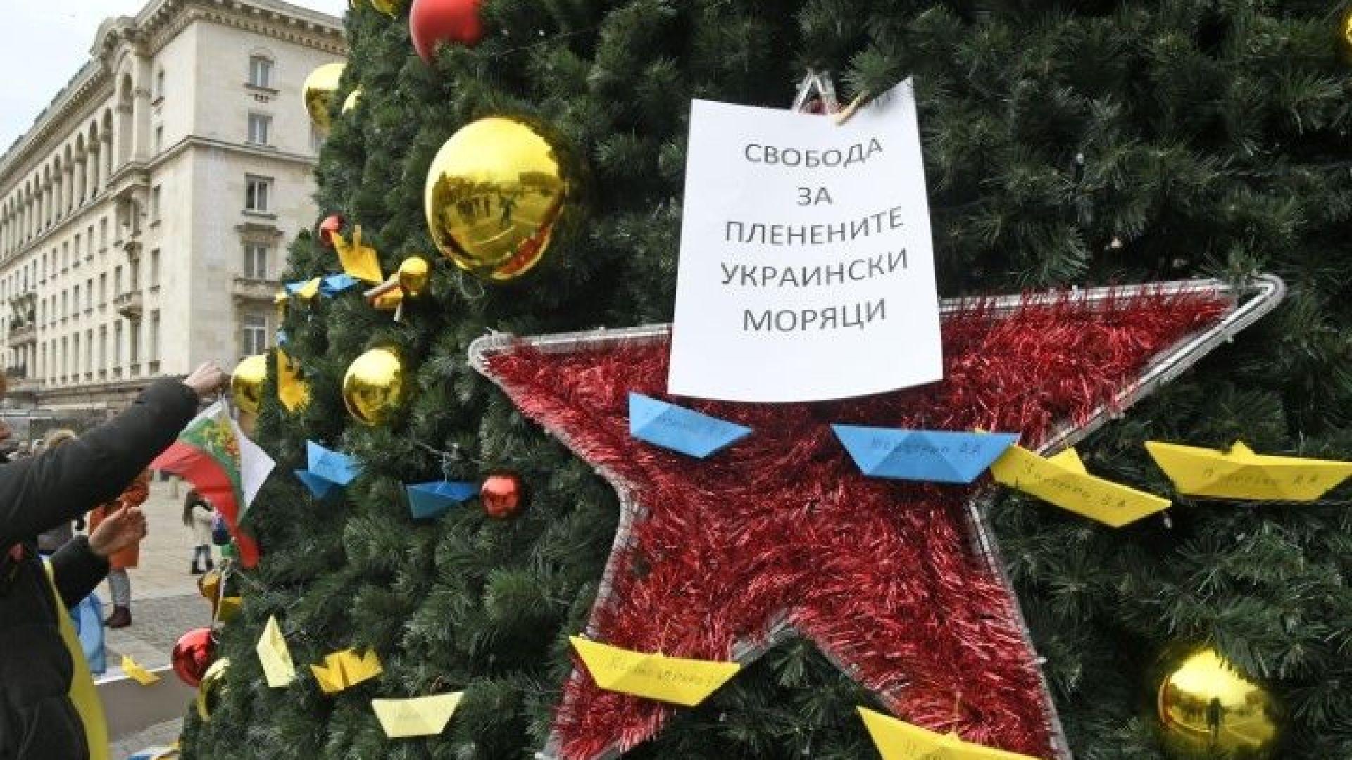 Една елха, подарък на България от Русия, предизвика полемика у