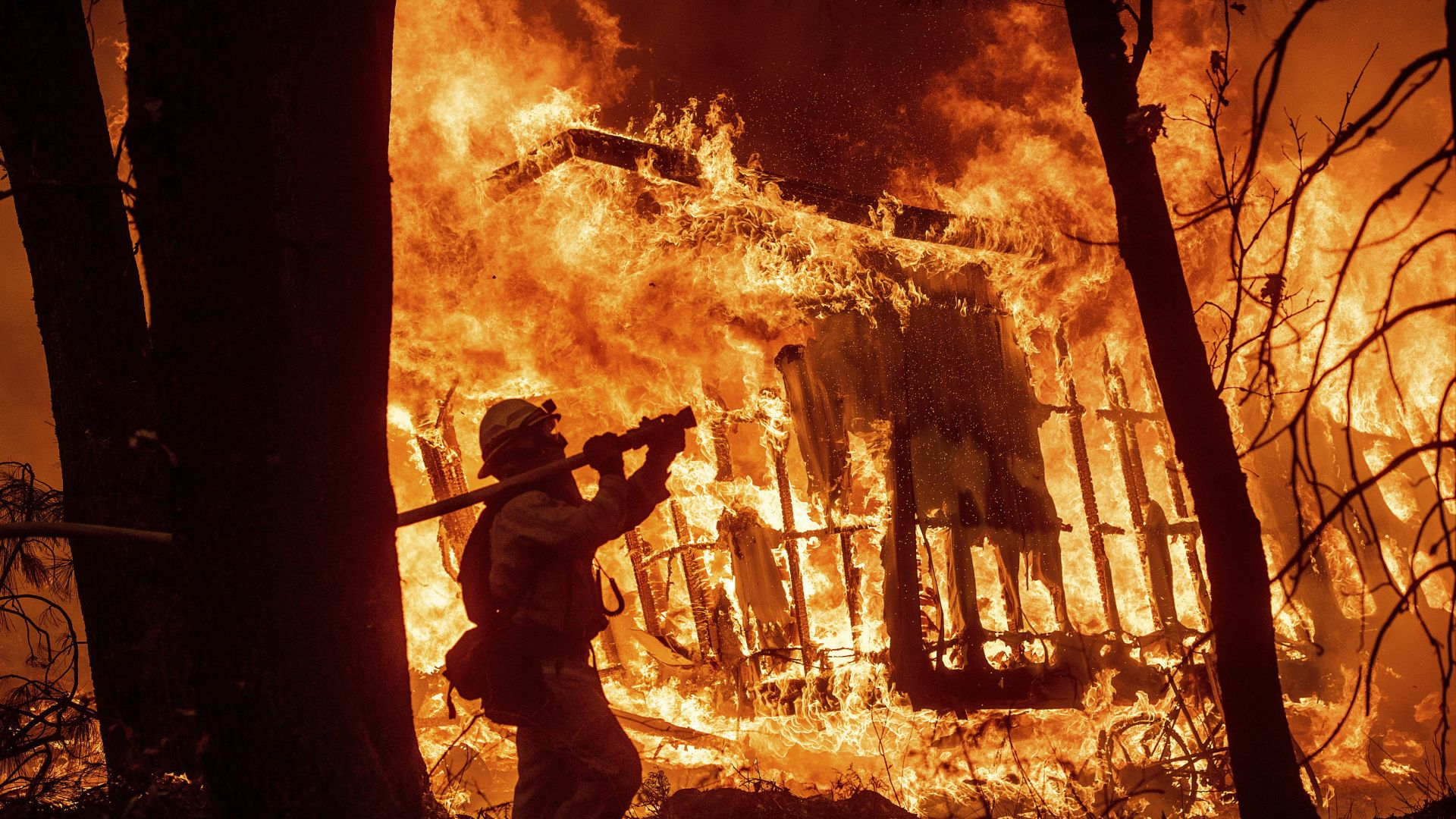Стихийните пожари в Калифорния са нанесли щети за $24 млрд.