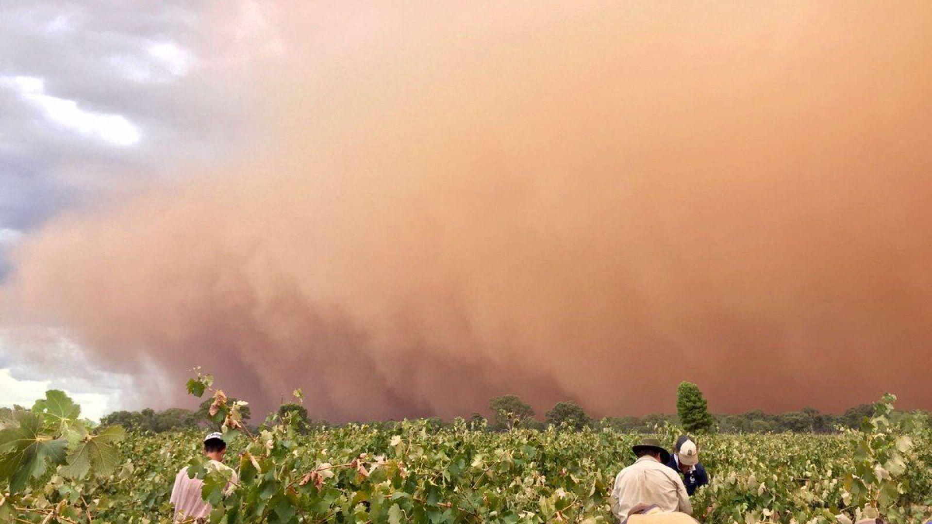 Пясъчна буря опустоши район в Австралия (видео)