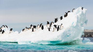 Глобалното затопляне е виновно за топенето на леда в Западна Антарктида