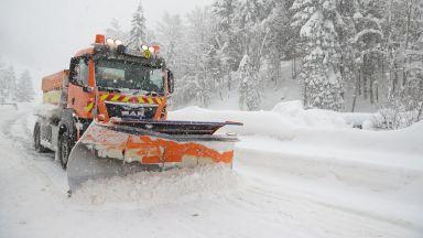 Обилен снеговалеж парализира Австрия и Германия, жп служители спасиха коза (ВИДЕО)