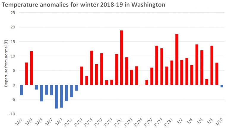 Във Вашингтон едва днес приключва цял месец с подчертано наднормено време с до над 10 градуса по-топло от нормалното
