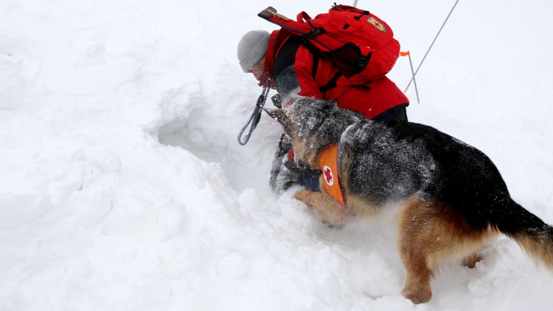 Лавина уби двама сноубордисти в Пирин