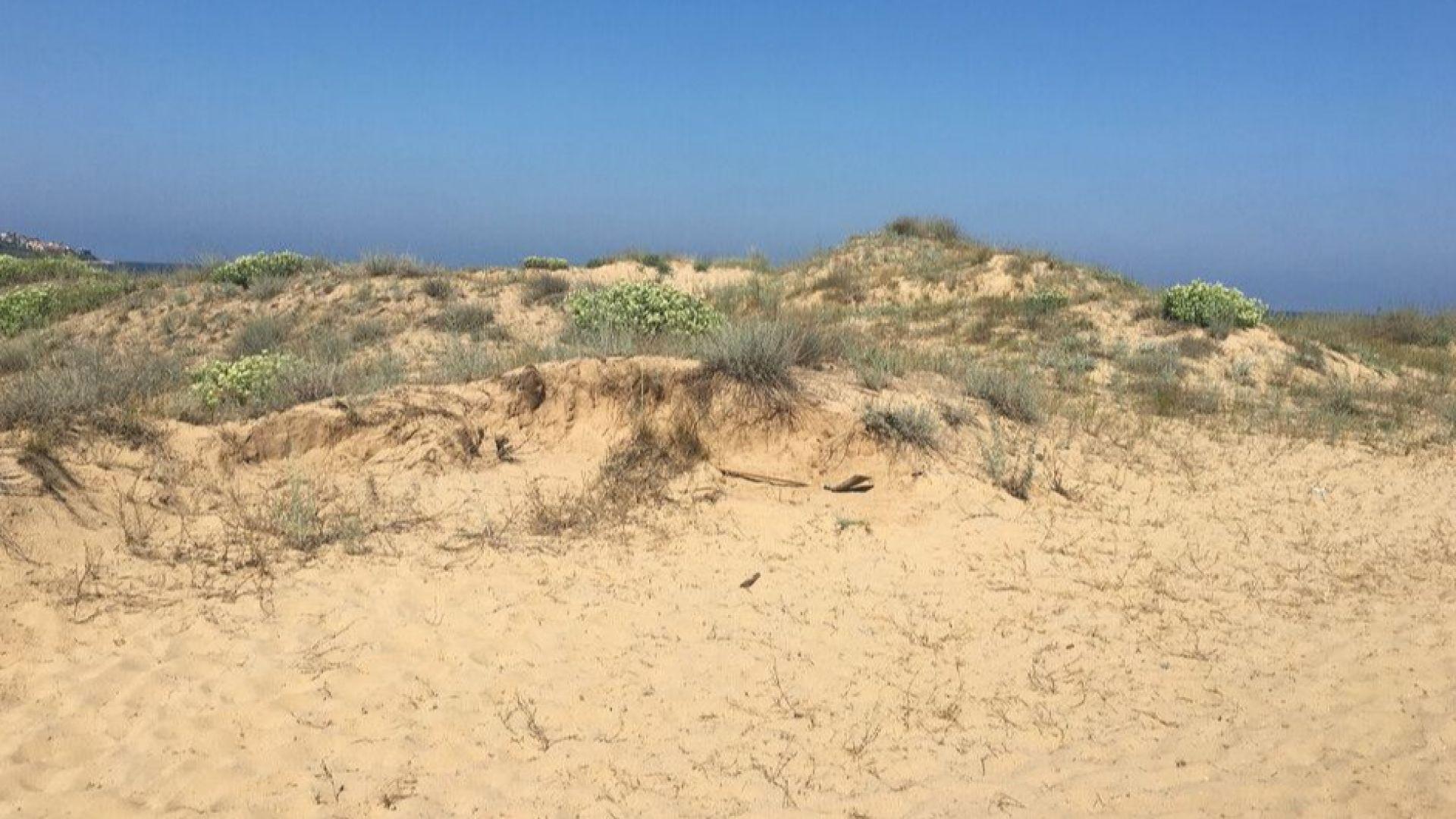 Министерството на туризма ще извърши спешна проверка на морски плаж