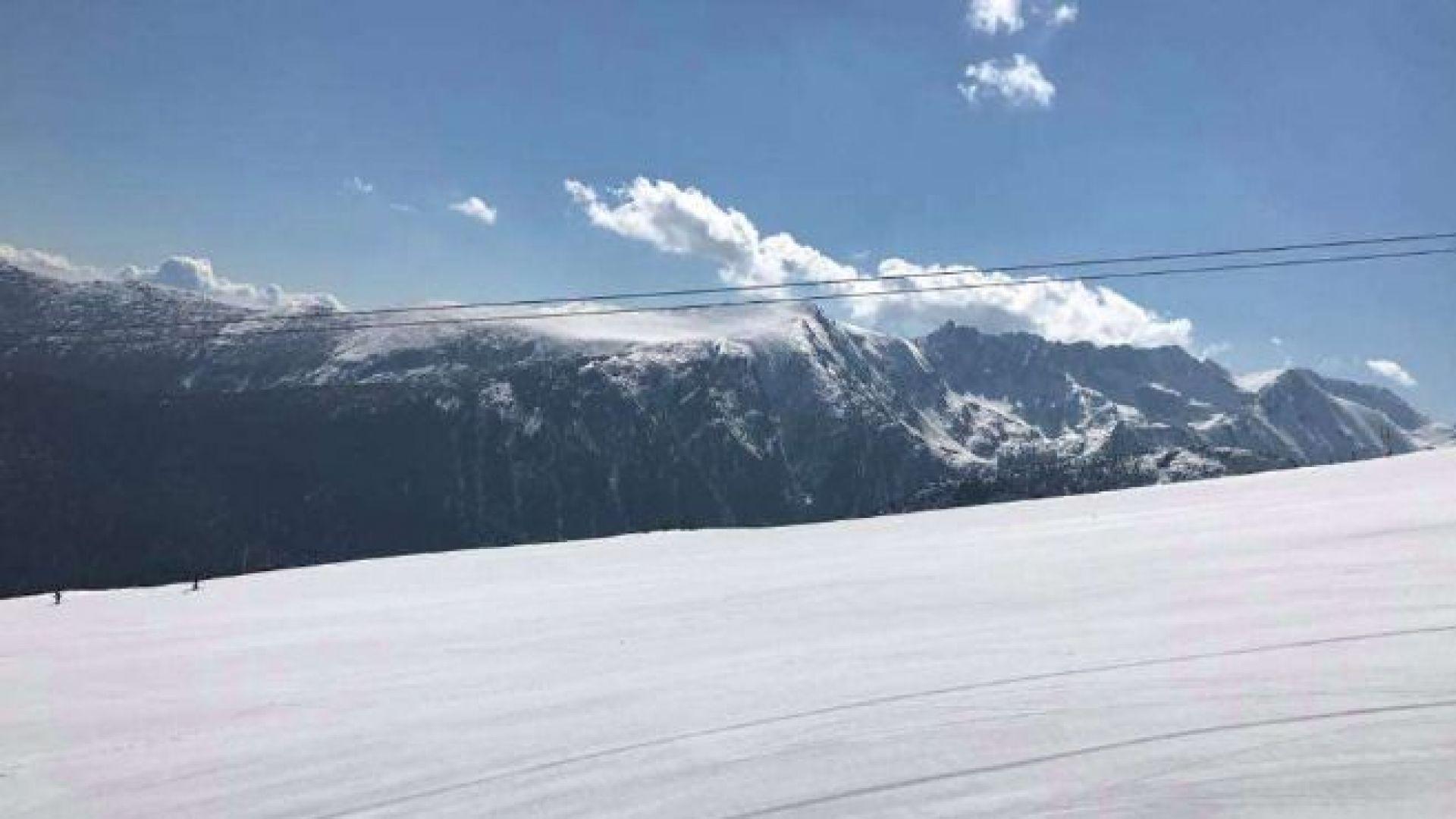 Спасиха петима македонски сноубордисти, попаднали в улей в Пирин