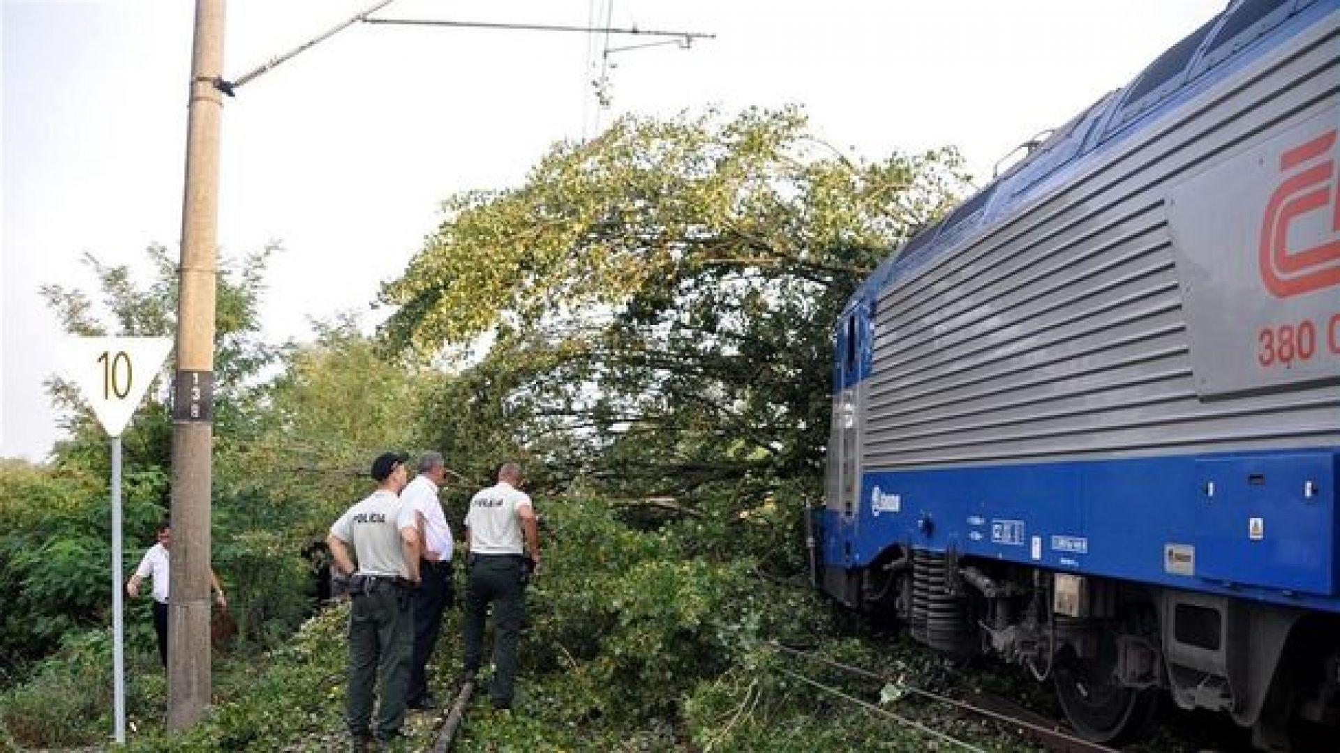Осъдиха чешки пенсионер за тероризъм срещу влакове