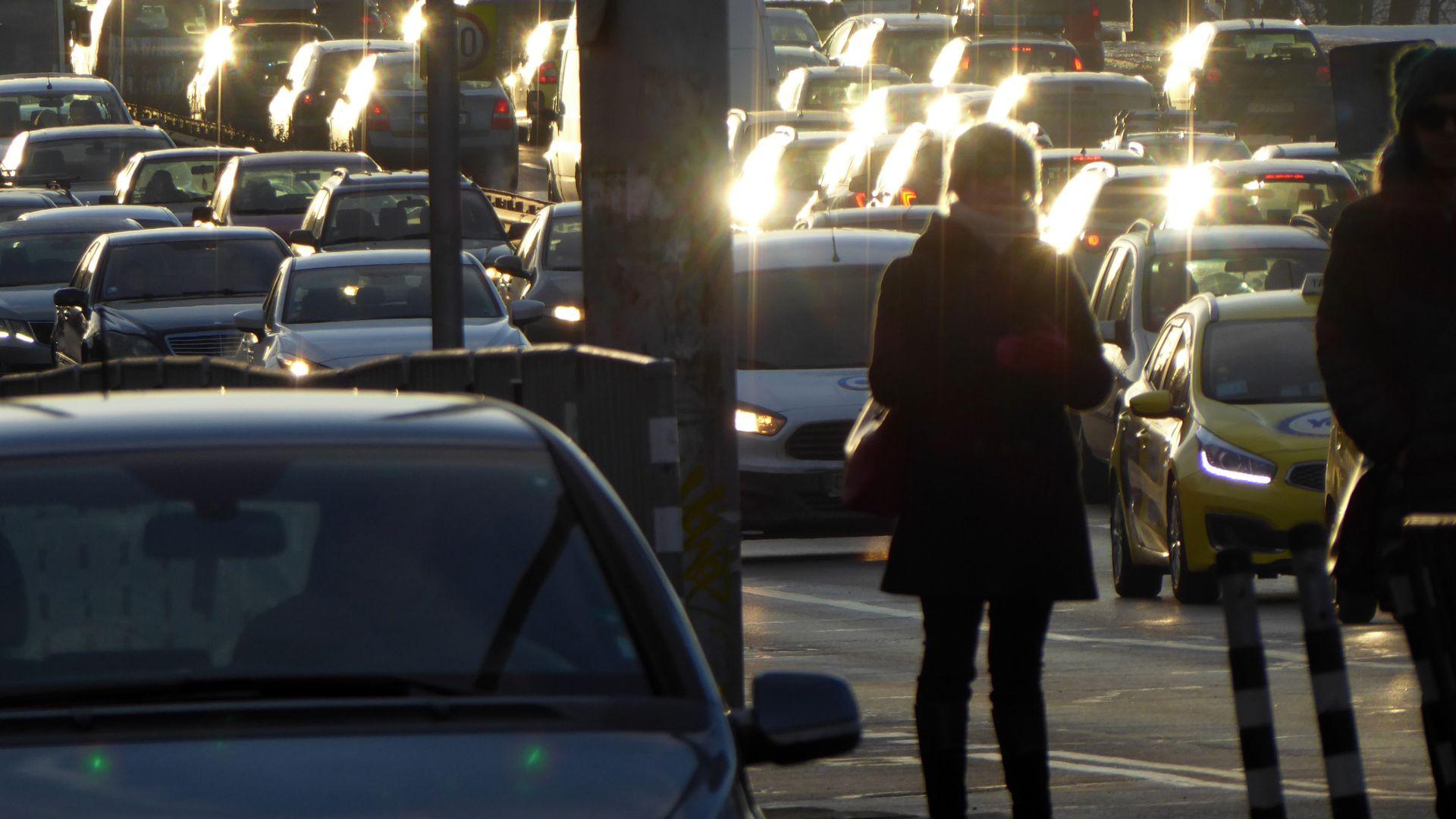 Проблем с колите, купени от Италия: Oт какво да се пазим?