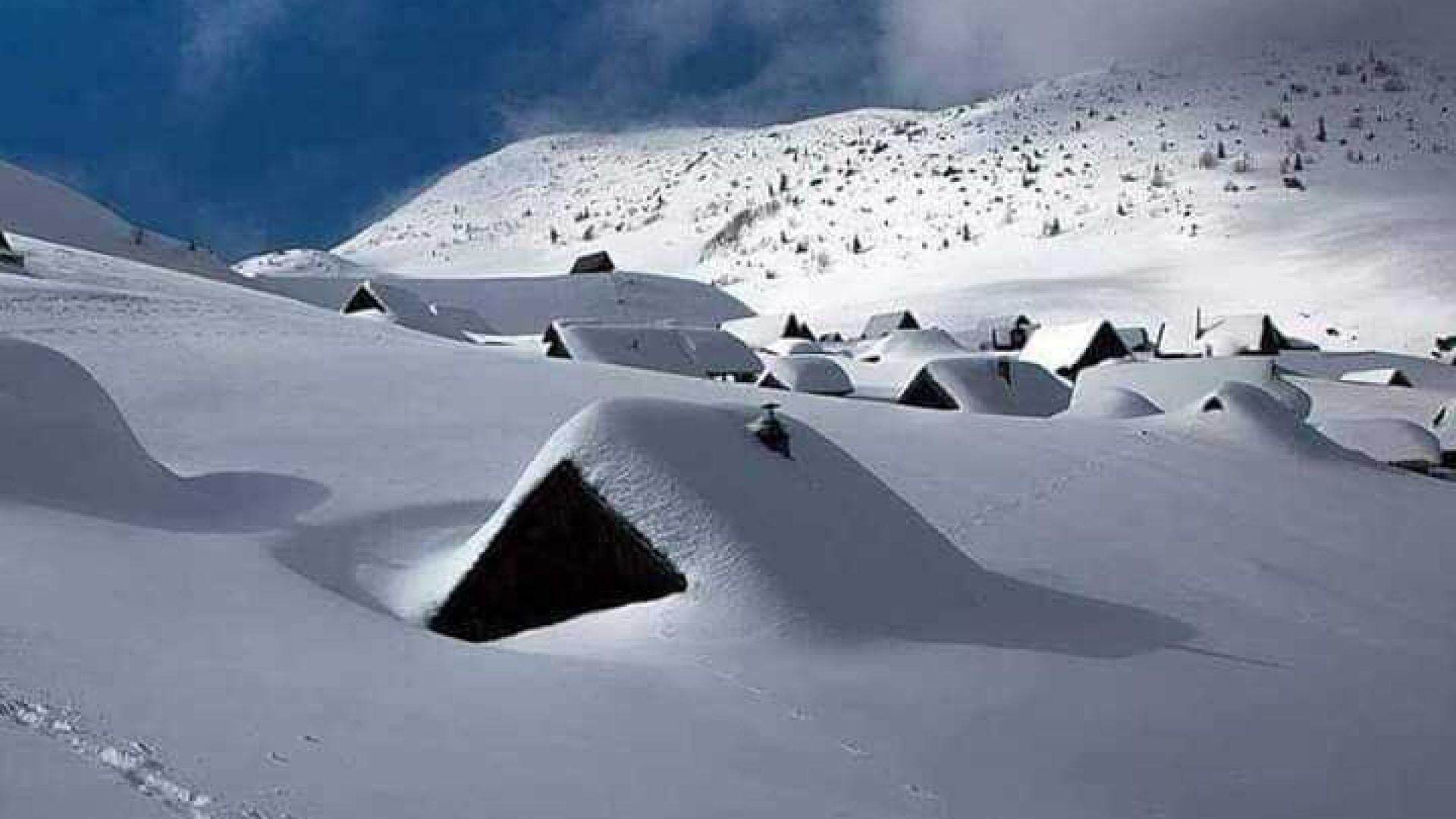 Открий къщата си под снега (снимки)