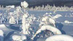 """Температурен рекорд в Москва, """"жега"""" в полюса на студа Оймякон"""