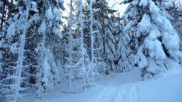 Рекордно дебелите снегове в Алпите се случвали веднъж на сто години