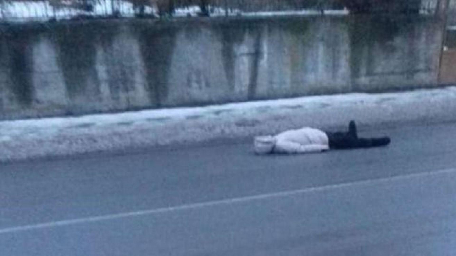 Психично болна лежи на пътя, за да й дадат пари