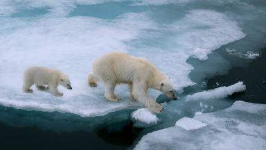"""""""Работи"""" ли глобалното затопляне през зимата?"""