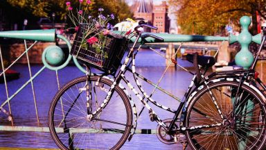 Четири университета разясняват предимствата на обучението в Холандия