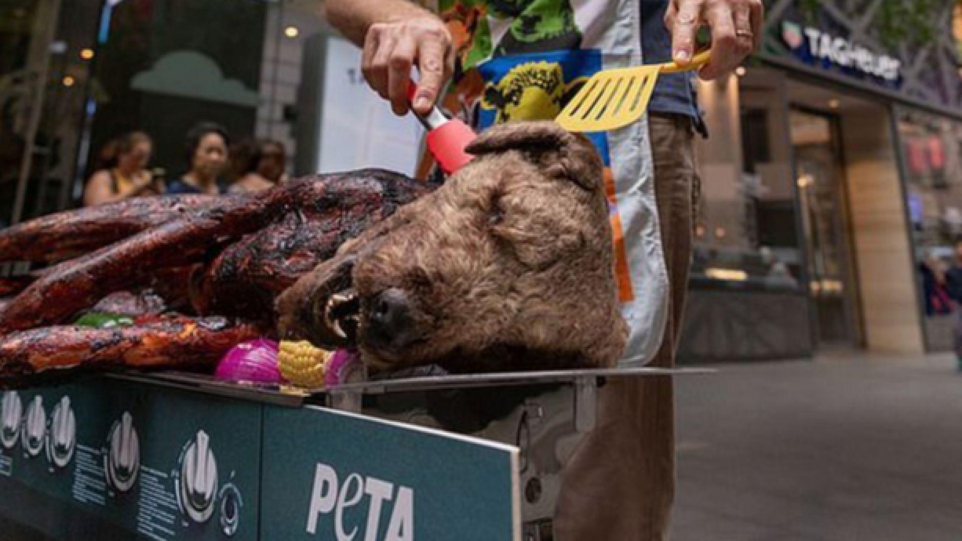 """Защитници на животни скандализираха Сидни, """"опекоха"""" куче"""