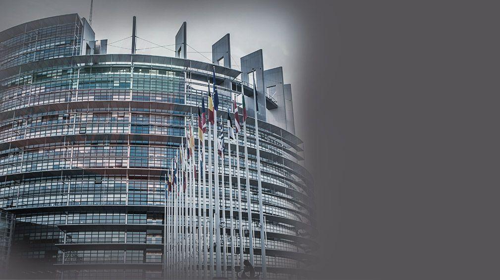 Европейски избори 2019