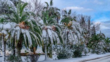 Силен студ и дебел сняг взеха жертви в Африка (галерия)