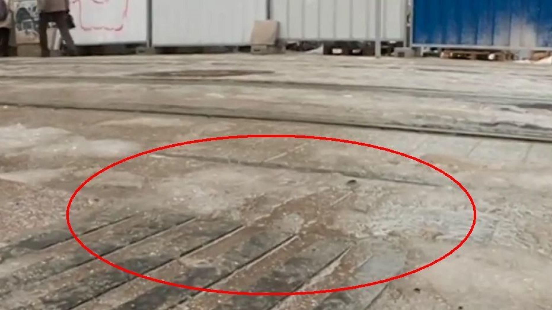 Опасна ли е пътната маркировка за незрящи в центъра на София?