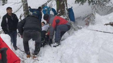 Дърво се стовари върху лифта в Пампорово и събори скиорка