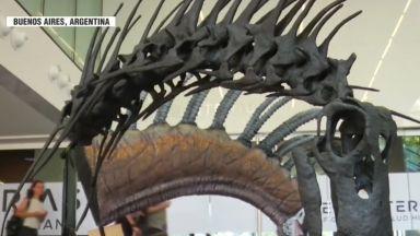 Учени откриха непознат вид тревопасен динозавър