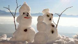 Възможна ли е нормална зима - първи сезонни прогнози