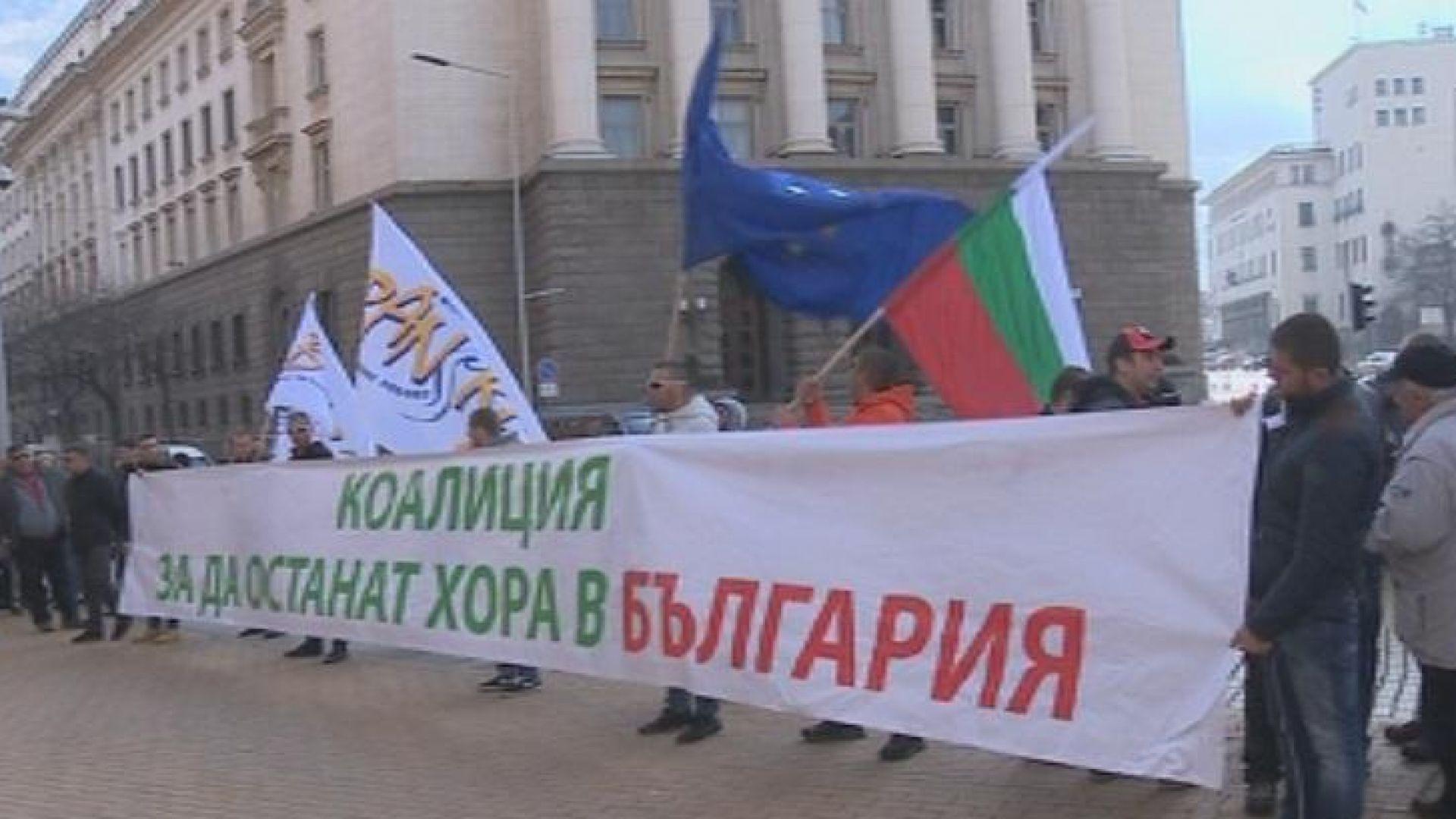 11 антизелени организации: НАТУРА 2000 превърна една трета от България в пущинак