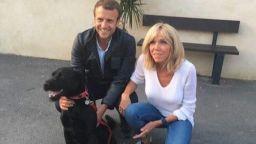 Кучето на Макрон ще увеличава доходите на Елисейския дворец