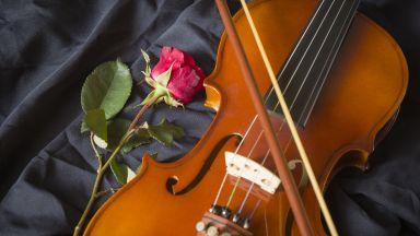 Игра на Impressio: На кого е посветен концертът за цигулка на Румен Бояджиев-син?
