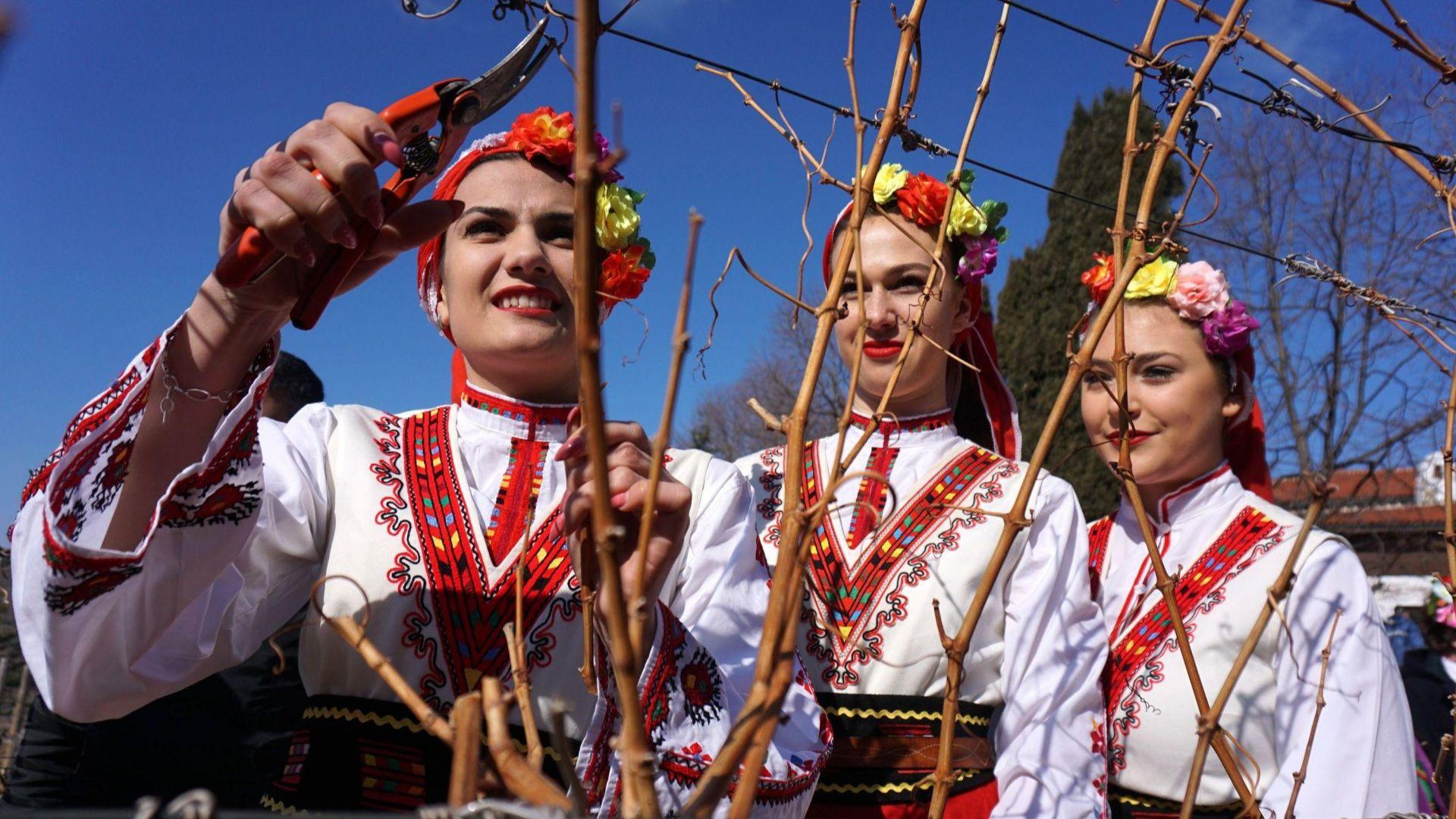 Трифон Зарезан, известен и като Ден на лозаря, е български