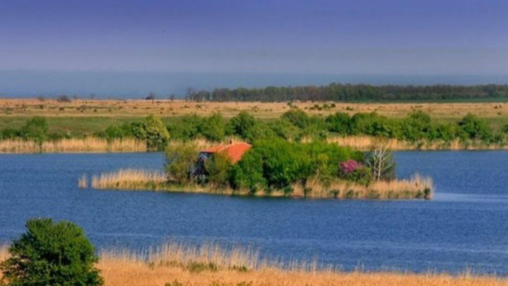 Бракониери стреляха по кола на природозащитници край езерото Дуранкулак