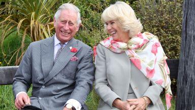 Принц Чарлз е с положителен резултат за коронавирус