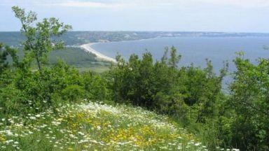 """Търсят доброволци за почистване на природен парк """"Златни пясъци"""""""